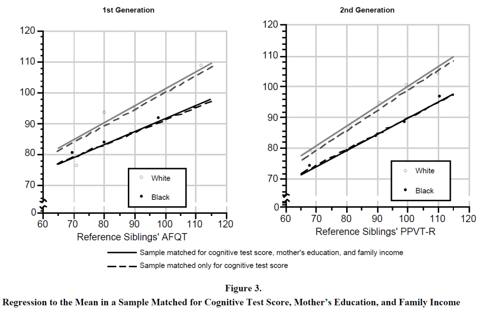 The Secular Increase in IQ and Longitudinal Changes in the Magnitude of the Black-White Difference - Evidence from the NLSY (Figure 3)