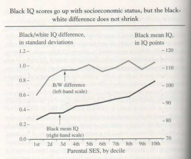 The Bell Curve, 1994, Herrnstein and Murray (graph p. 288)