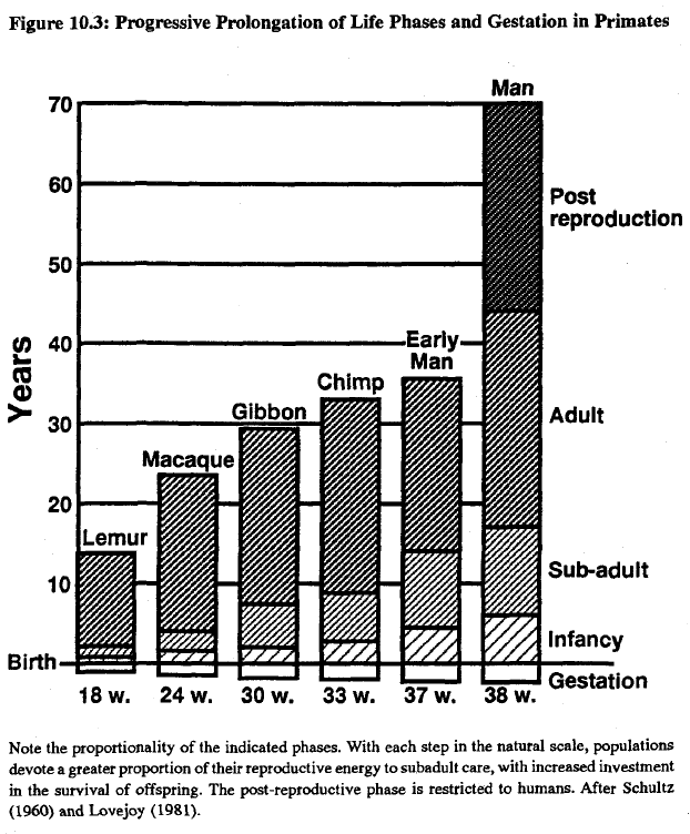 Race, evolution, and behavior (Rushton) Figure 10.3