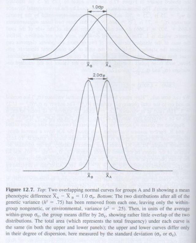 The g Factor (Arthur Jensen) p. 452