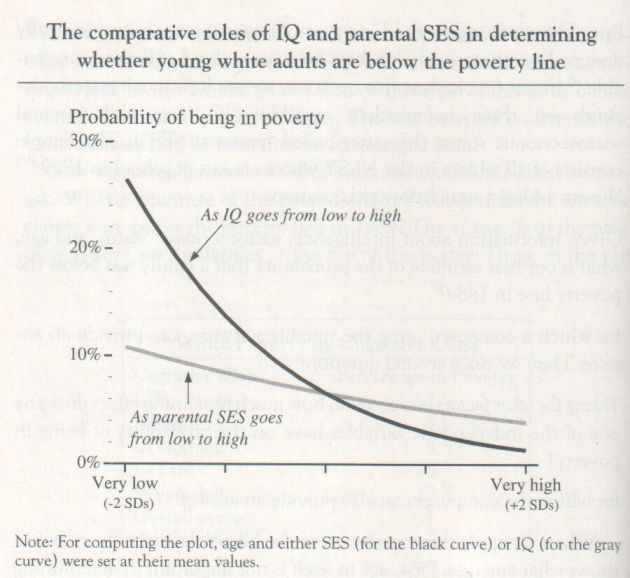 The Bell Curve, 1994, Herrnstein and Murray (graph p. 134)