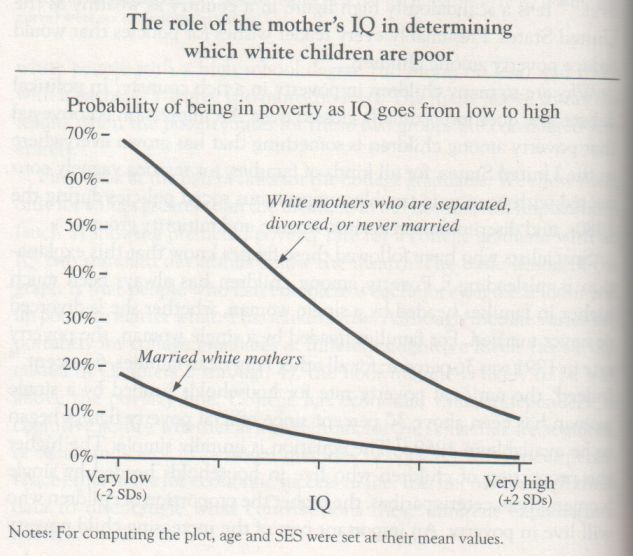 The Bell Curve, 1994, Herrnstein and Murray (graph p. 138)