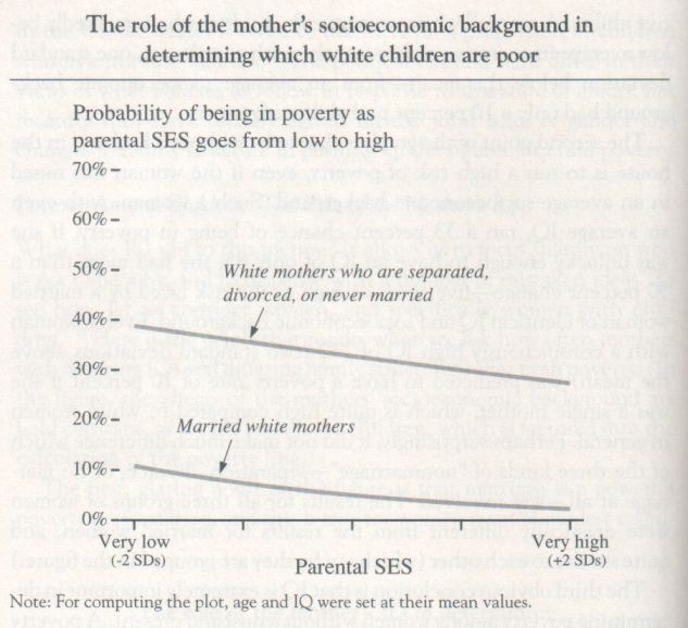 The Bell Curve, 1994, Herrnstein and Murray (graph p. 140)