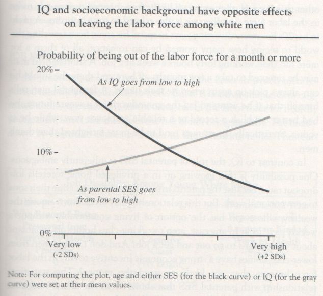 The Bell Curve, 1994, Herrnstein and Murray (graph p. 159)