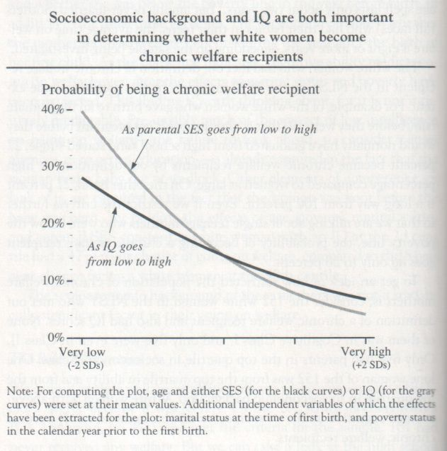 The Bell Curve, 1994, Herrnstein and Murray (graph p. 198)