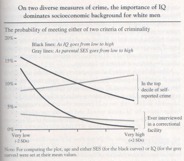 The Bell Curve, 1994, Herrnstein and Murray (graph p. 249)