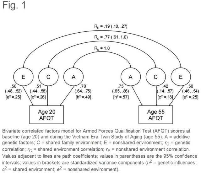 Genes Determine Stability and the Environment Determines Change in Cognitive Ability During 35 Years of Adulthood - Figure 1