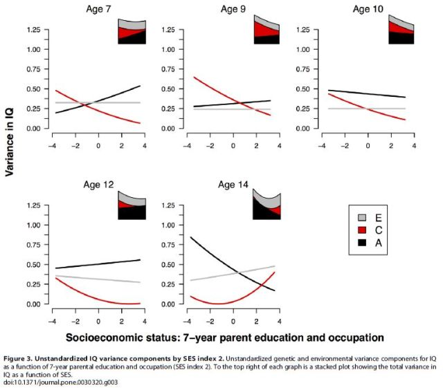 Socioeconomic Status (SES) and Children's Intelligence (IQ) - In a UK-Representative Sample SES Moderates the Environmental, Not Genetic, Effect on IQ - F3